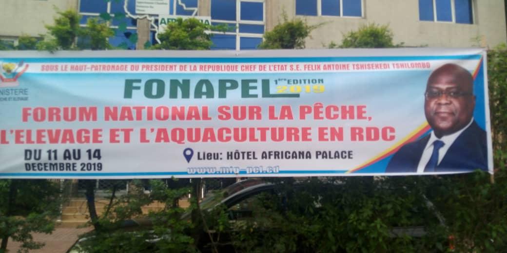 Photo of Kinshasa: un forum sur la pêche, l'élevage et l'aquaculture du 11 au 14 décembre